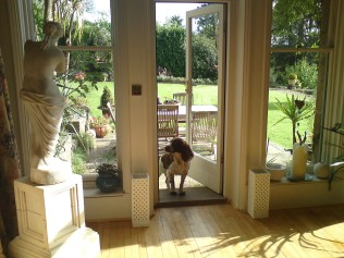 Pets are welcome in our private country house